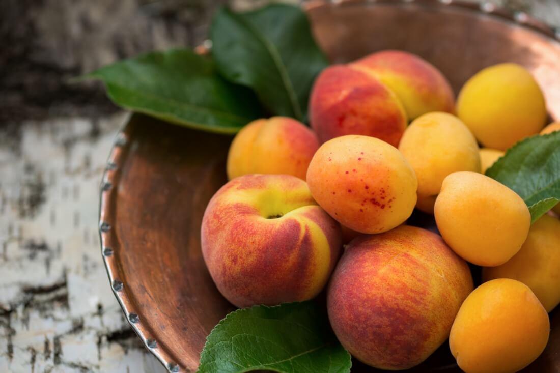 kouzlo-letniho-ovoce-2_clanek_cerven.jpg